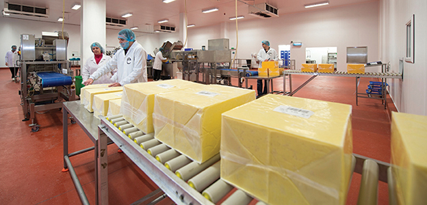 Extons Foods - Production Line 72dpi